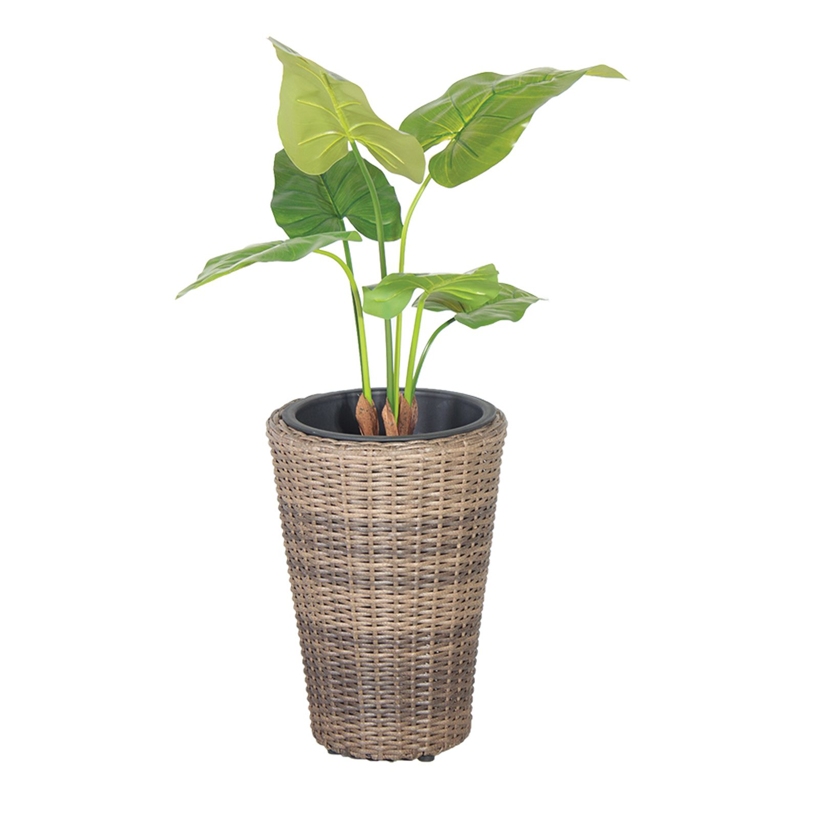 Iron planter   Shop for cheap Garden & Leisure and Save online