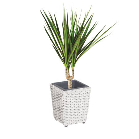 Cozy Bay Square plant pot with iron frame medium