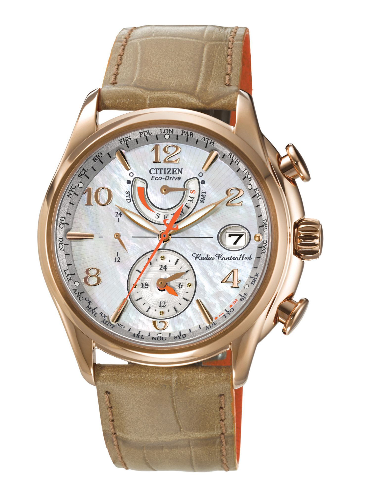Citizen Eco-drive world tine at brown ladies watch