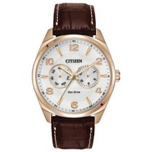 AO9023-01A Eco-Drive brown leather solar watch