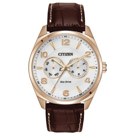 Citizen AO9023-01A Eco-Drive brown leather solar watch