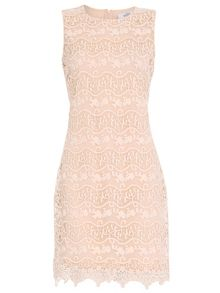 Badgley Mischka Lace Shift Dress
