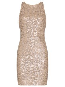 Badgley Mischka Stretch Sequin Dress