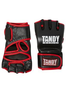Tandy Boxing MMA Gloves