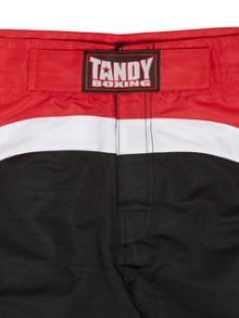 Tandy Boxing Boxing Training/MMA Shorts