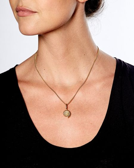 Katie Mullally Gold plated ammonite charm and chain