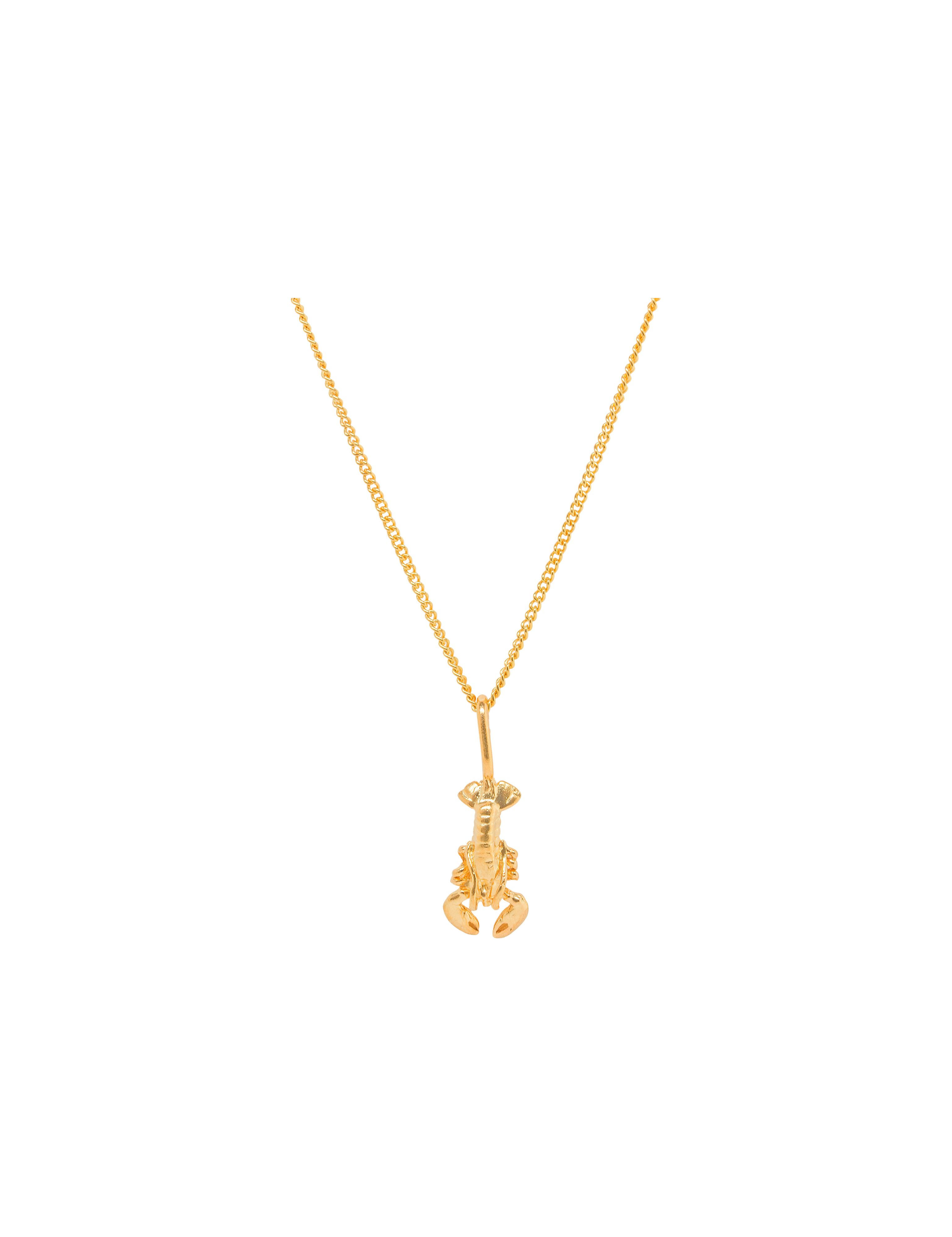 Katie Mullally Katie Mullally Gold plated lobster charm and chain, Metallic