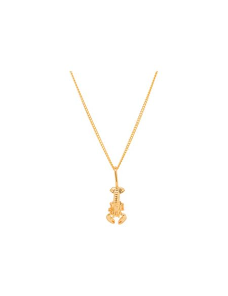 Katie Mullally Gold plated lobster charm and chain