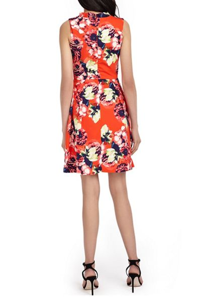 Wolf & Whistle Floral Frill Dress