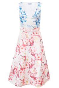 Whistle & Wolf Floral Cut Out Midi Dress