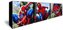 Graham & Brown Spiderman Set of 3 Box Art