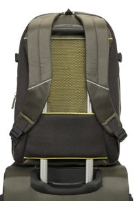 Samsonite Samsonite 4mation Olive Laptop BackPack