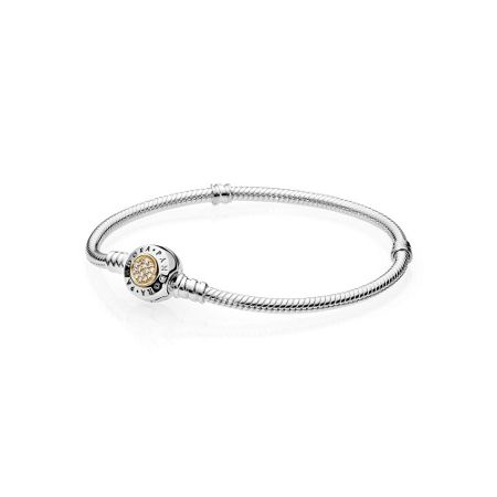 Pandora Moments signature two-tone bracelet
