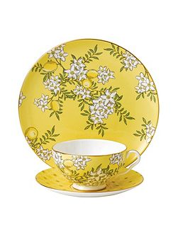 Tea garden lemon & ginger 3-piece set