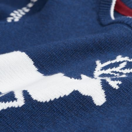 Gant Boys Reindeer Crew Sweater