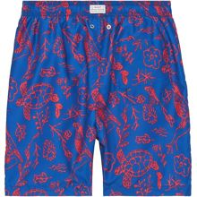Boys  Bird Swim Boxer