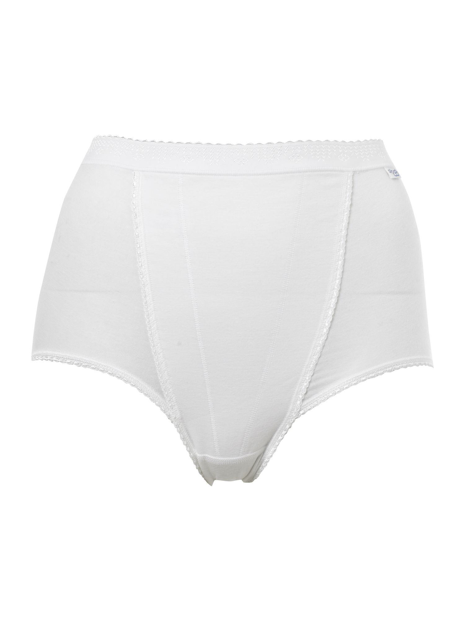 Sloggi Control maxi 2 pack briefs White