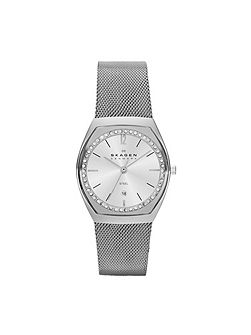 SKW2049 Classic Silver Ladies Mesh Watch