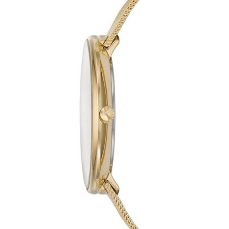 Skagen SKW2141 Gitte Gold Ladies Mesh Watch