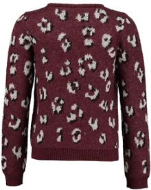 Garcia Girls Leopard Print Jumper