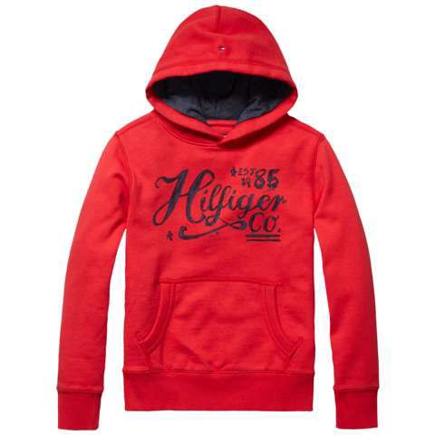 Boys hilfiger hooded top