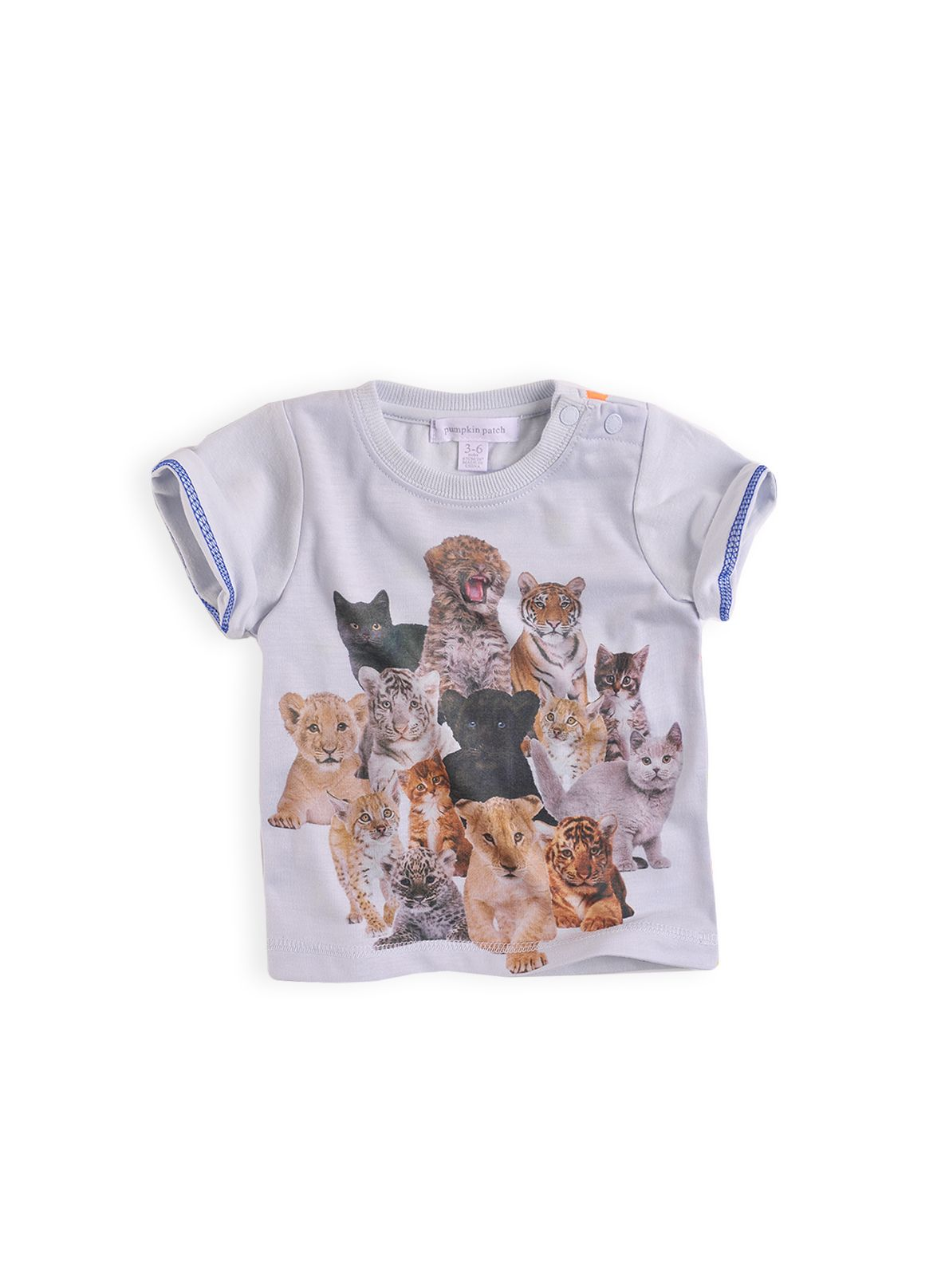 Boys printed fashion t-shirt