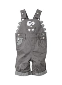 Boys w/s dungaree