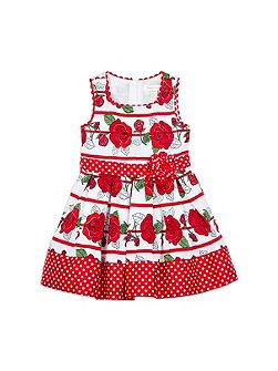 Pumpkin Patch Girls Rose Stripe Print Dress