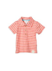 Pumpkin Patch Boys Mini Stripe Polo