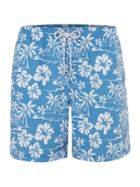 Men's Howick Hawaiian Palm Tree Print Swim Short