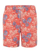 Hawaiian Palm Tree Print Swim Short