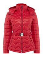 Armani Exchange Belted Padded Puffer Coat in Royal
