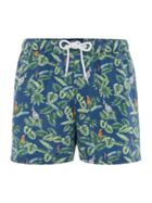 Men's Criminal Parrot and Palm Leaf Print Swim