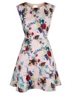 Winter Floral Print Cap Sleeve Dress