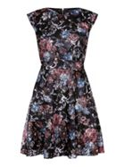 Mela London Flower And Leaf Print Skater Dress