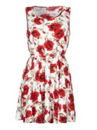 Mela London Rose Print Sleeveless Dress
