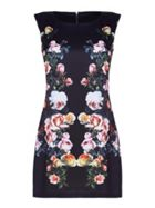 Mela London Curve Rose Print Panel Shift Dress