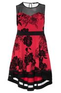 Quiz Quiz Curve Red And Black Floral Print
