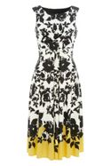 Roman Originals Fit and Flare Contrast Floral Dress