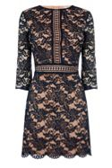 Oasis Lace 34 sleeve shift dress