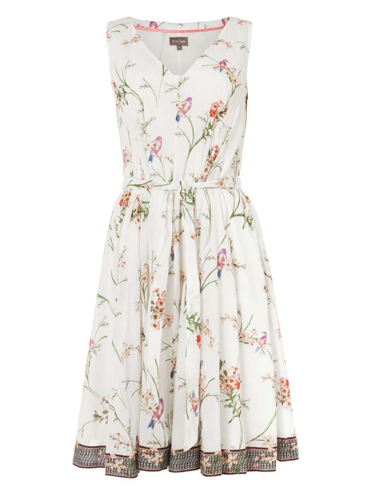ff0812ca9ab2 Phase Eight Hummingbird Print Dress - House of Fraser