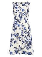 Phase Eight Lola Lace Printed Dress