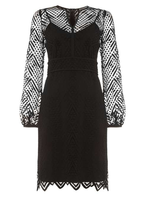 Phase Eight Lorna Lace Dress House Of Fraser