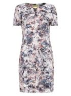 Phase Eight Jackson Print Dress