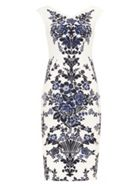 Phase Eight Whitney Placement Print Dress