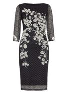 Phase Eight Daisy Floral Lace Dress