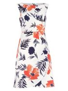 Phase Eight Juana Print Dress