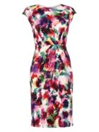 Phase Eight Sabella Print Dress