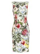 Phase Eight Evangelie Floral Dress