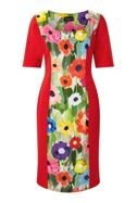 James Lakeland Poppy Print Panel Dress
